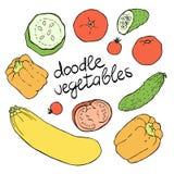 Verduras dibujadas mano fijadas Imagen de archivo