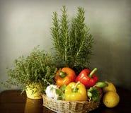 Verduras e hierbas aromáticas en la cocina fotografía de archivo libre de regalías