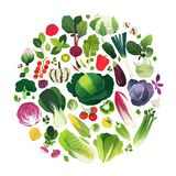 Verduras e hierbas manejadas en una forma redonda Imagenes de archivo