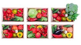 Verduras en cajas Imagenes de archivo