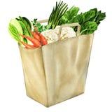Verduras en el bolso de ultramarinos blanco aislado Imagen de archivo