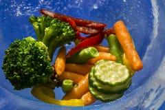 Verduras en el hielo Foto de archivo
