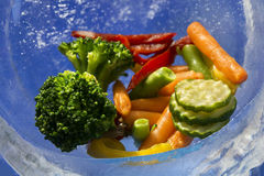 Verduras en el hielo Fotos de archivo libres de regalías