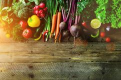 Verduras en fondo de madera Bio alimento biológico, hierbas y especias sanos Concepto crudo y vegetariano Ingredientes fotos de archivo libres de regalías