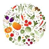 Verduras en la forma de un círculo ilustración del vector