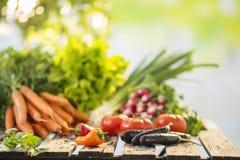 Verduras en la tabla Imágenes de archivo libres de regalías