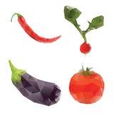 Verduras en pimienta roja del rábano de la berenjena polivinílica baja del tomate Fotos de archivo