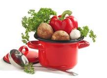 Verduras en un pote de cocinar sobre blanco Imagen de archivo