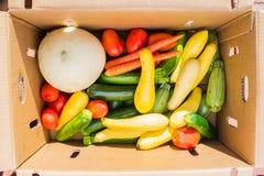 Verduras en una caja de cartón Imágenes de archivo libres de regalías