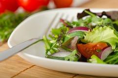 Verduras: ensalada Foto de archivo libre de regalías
