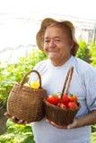 verduras escogidas del viejo hombre Fotografía de archivo