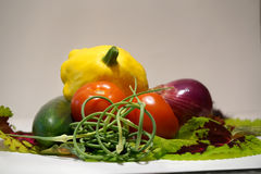 Verduras escogidas frescas Fotos de archivo libres de regalías