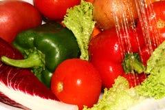 verduras frescas Imagen de archivo libre de regalías