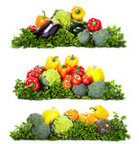 Verduras frescas. Foto de archivo