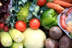Verduras frescas Fotos de archivo libres de regalías