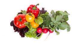 Verduras frescas aisladas en un fondo blanco Fotografía de archivo libre de regalías