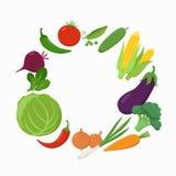 Verduras frescas alrededor del lugar del texto en diseño plano aislado en el fondo blanco Vector vegetariano del concepto de la c stock de ilustración