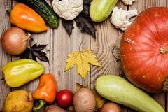 Verduras frescas, concepto de la cosecha, endecha plana Foto de archivo libre de regalías
