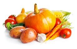 Verduras frescas de la cosecha otoñal foto de archivo