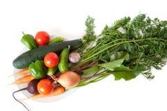 Verduras frescas del jardín en una placa blanca Imagen de archivo