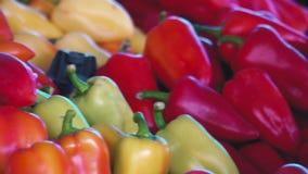 Verduras frescas del mercado de la fruta y verdura en el contador en la tienda Mercado espontáneo en la calle en la ciudad metrajes