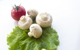 Verduras frescas determinadas con la hoja verde Imagen de archivo