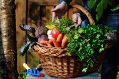 Verduras frescas en cesta de mimbre Imágenes de archivo libres de regalías