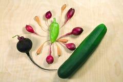 Verduras frescas en el fondo de madera Imágenes de archivo libres de regalías