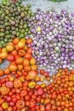 Verduras frescas en el mercado Luang Prabang de la mañana Imagen de archivo libre de regalías
