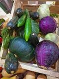 Verduras frescas en la cesta Foto de archivo libre de regalías