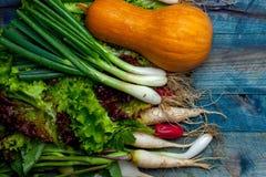 Verduras frescas en la tabla de madera Imagen de archivo