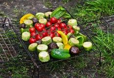 Verduras frescas para asar a la parrilla al aire libre Imagen de archivo libre de regalías