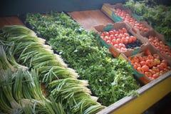 Verduras frescas para la venta en el mercado Imagen de archivo libre de regalías