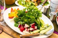 Verduras frescas: rábanos, pepinos, pimientas e hierbas imagen de archivo libre de regalías