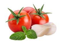Verduras frescas tomate rojo, ajo, menta imágenes de archivo libres de regalías
