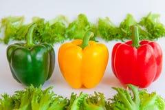 Verduras frescas tres pimientas dulces y frillis verdes, amarillos, rojos Foto de archivo libre de regalías
