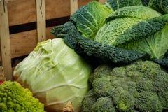 Verduras frescas verdes - col de col rizada entera, bróculi, el otro Ca Imagen de archivo libre de regalías
