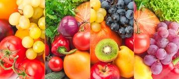 Verduras frescas y frutas de la colección panorámica Foto de archivo libre de regalías