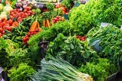 Verduras frescas y orgánicas en el mercado de los granjeros: raddish, tomates, eneldo, ensalada, onoins verdes, ajo imagen de archivo