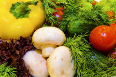 Verduras frescas y verdes Fotografía de archivo libre de regalías