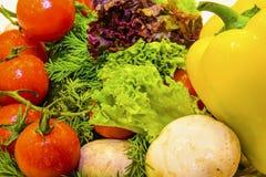Verduras frescas y verdes Imagenes de archivo