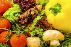 Verduras frescas y verdes Foto de archivo libre de regalías