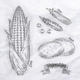 Verduras maíz, guisantes, vintage de las patatas Imagen de archivo