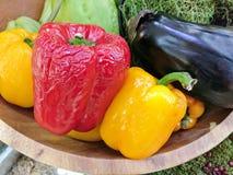 Verduras marchitadas Imágenes de archivo libres de regalías