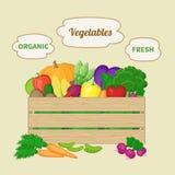 Verduras mezcladas en una caja de madera Cajón con las verduras del otoño Alimento biológico fresco de la granja Imágenes de archivo libres de regalías