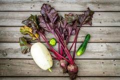 Verduras orgánicas escogidas frescas del jardín, disposición plana Foto de archivo libre de regalías