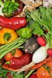 Verduras orgánicas para una comida sana Foto de archivo libre de regalías