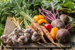 Verduras orgánicas sanas en un fondo de madera foto de archivo