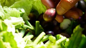 Verduras para comer con goma del chile imagen de archivo