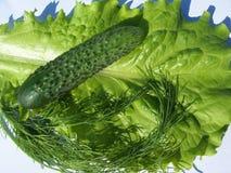 Verduras para la ensalada Imágenes de archivo libres de regalías